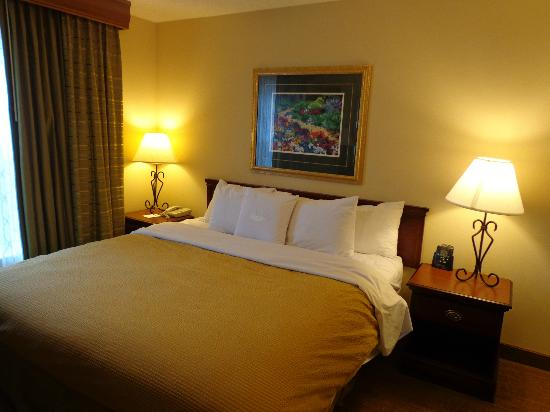 Homewood Suites St. Louis Chesterfield: King bed