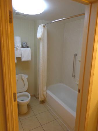 Homewood Suites St. Louis Chesterfield: bath room