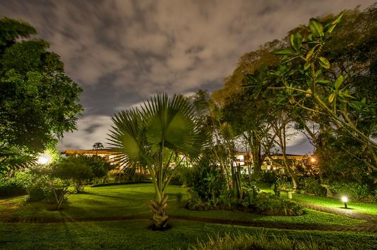 Hotel Bougainvillea: Night time view of gardens