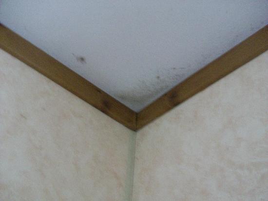 La Croix du Vieux Pont: Mould in corner of room 