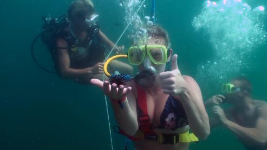 Scubatech Destin Fl Hours Address Scuba Amp Snorkeling