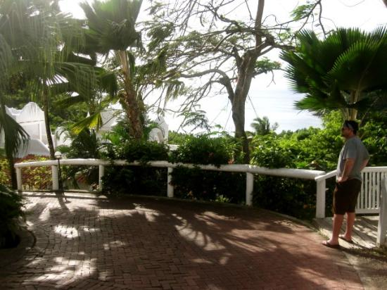 Windjammer Landing Villa Beach Resort: Hotel grounds