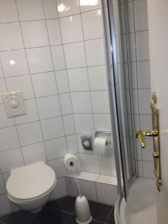 Best Western Savoy Hotel: sehr kleine Dusche