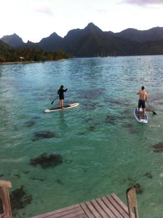 Hilton Moorea Lagoon Resort & Spa : Paddleboarders