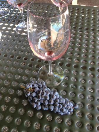 Arger-Martucci Vineyards: Empty wine glass means good wine.