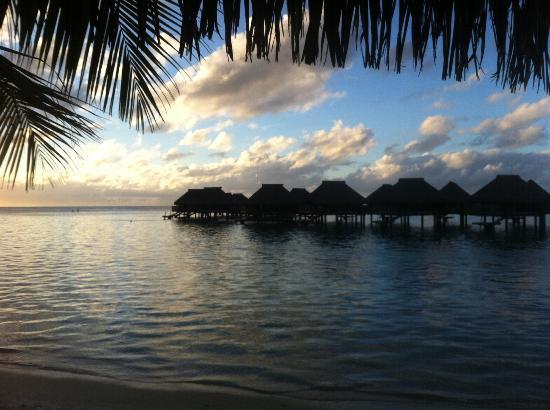 Hilton Moorea Lagoon Resort & Spa : View from beach