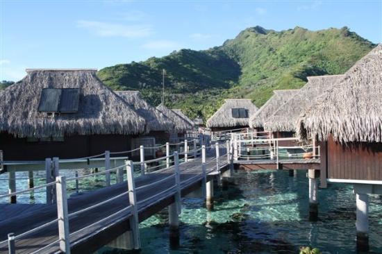 منتجع Hilton Moorea Lagoon Resort & Spa: View back to mainland