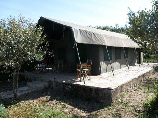 Mara Sidai Camp: tienda