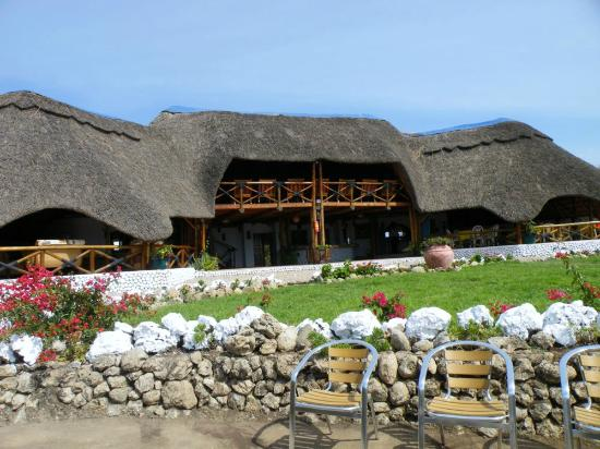 Manyara Wildlife Safari Camp: bar-restaurante