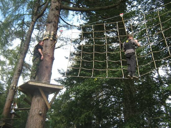 TreeZone Aviemore: hanging on