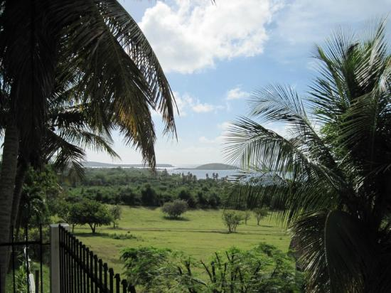 Hacienda Tamarindo: breathtaking view from our private balcony