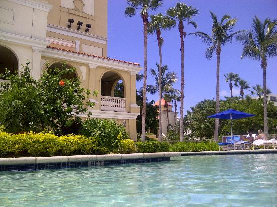 Pool View Picture Of The Ritz Carlton Sarasota