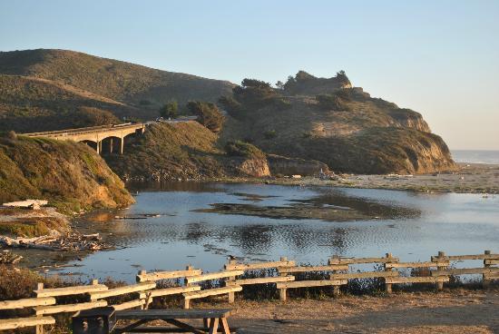 Sofitel San Francisco Bay: San Gregorio State Beach