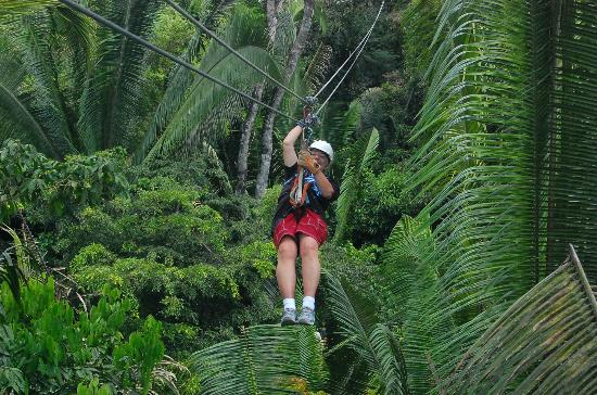 Belize Zip Line Canopy Tours: Hand pressure on the cable line slows you down when approaching a platform. Gloves supplied.