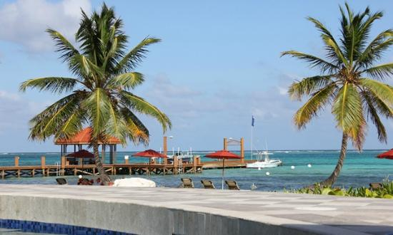 Grand Caribe Belize Resort and Condominiums : View from the pool