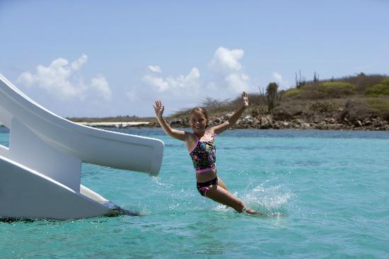 Red Sail Sports Aruba: All of our catamarans have slides!
