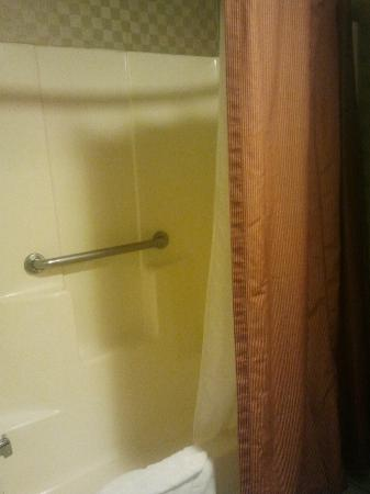 BEST WESTERN De Anza Inn: Slightly dated shower - good though