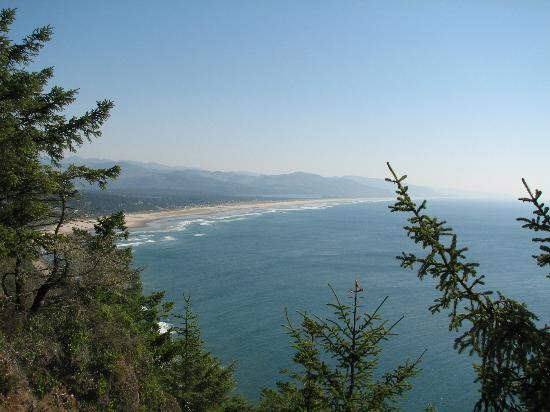 The Coho Oceanfront Lodge: North of Lincoln City