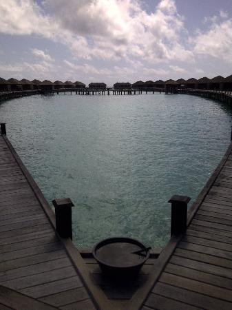 ‪منتجع وسبا ليلي بيتش: The Water villas