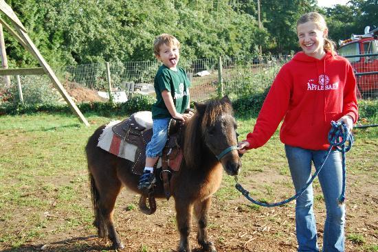 Applebarn at Taves Family Farms : Ponyrides