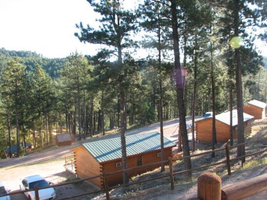Holy Smoke Resort: View from Cabin 16B