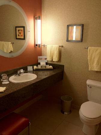 Kinzie Hotel: Wonderfully clean, well -appointed bathroom