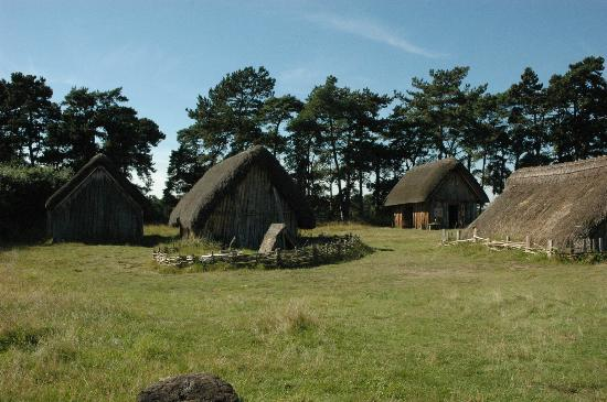 West Stow Country Park and Anglo-Saxon Village: Anglo-Saxon Village - part with open air museum