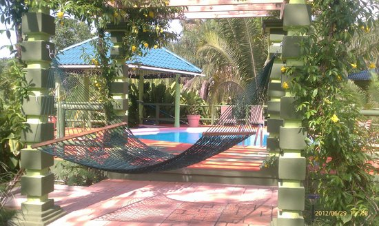 Inn the Bush Eco-Jungle Lodge: Hammock under the trellis by the pool