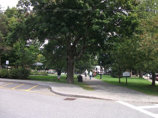 Village Green : Fontaine et arbres matures