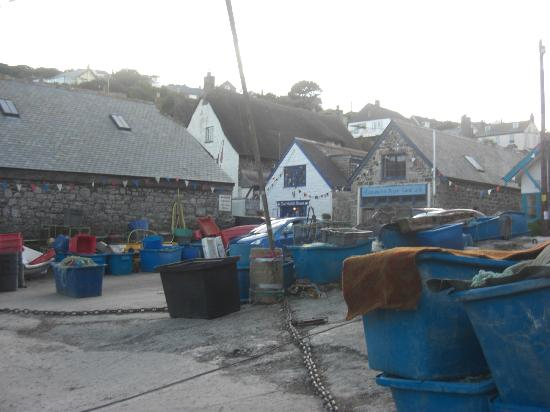 Cadgwith Cove Inn: Harbour