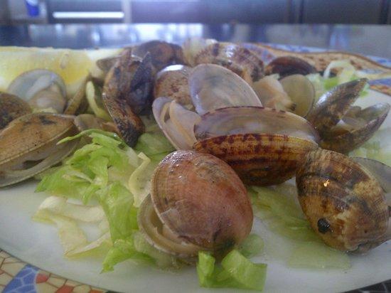 Foto de Les Palmeres Restaurant Marisqueria