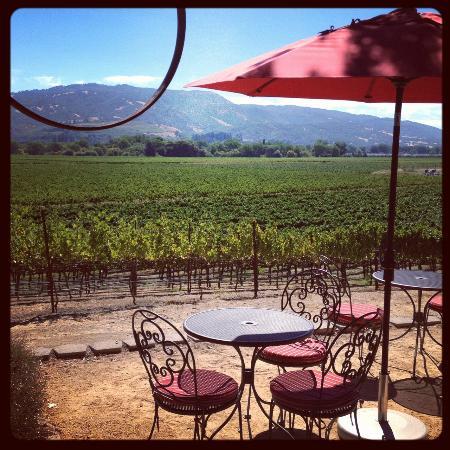 Rivino Winery: Picnic lunch
