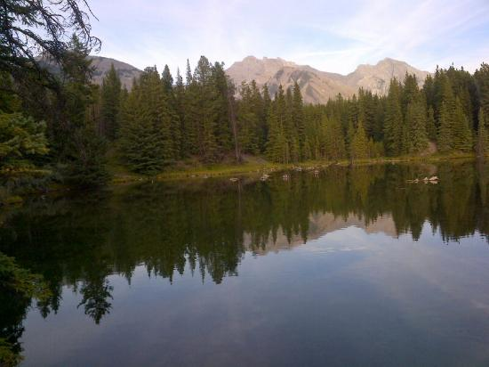 Minnewanka Loop / Lake Johnson: on, Banff National Park, Alberta, Canada