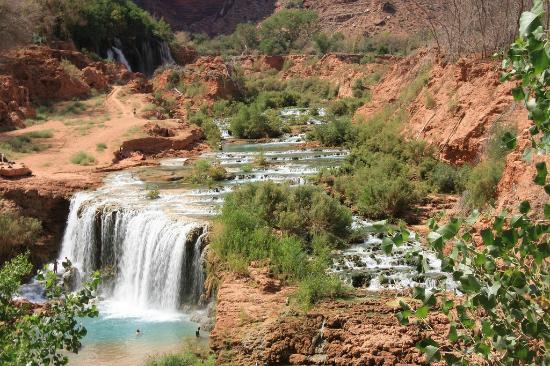 Navajo Falls: Navaho Falls