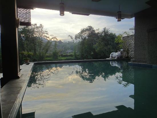 Luta Resort Toraja: swimmingpool and view