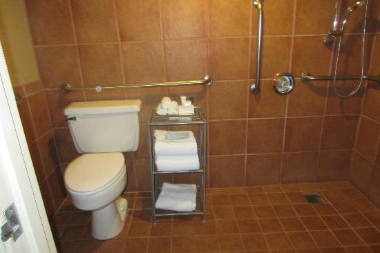 هيلتون إيوجين: Bathroom