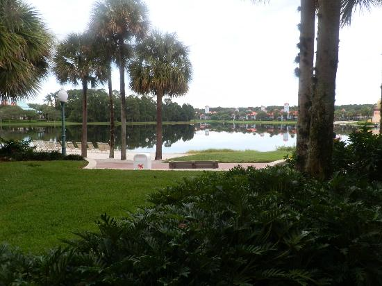 ‪‪Disney's Caribbean Beach Resort‬: View from walking path