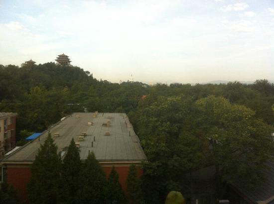 King Parkview Hotel: View from Roof Top Garden
