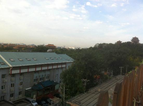 كنج بارك فيو هوتل: View from Roof Top Garden 