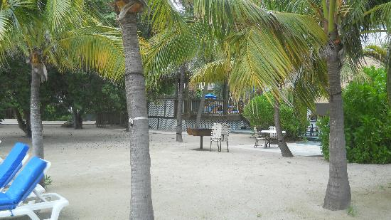 Banana Bay Resort - Key West : Beach area