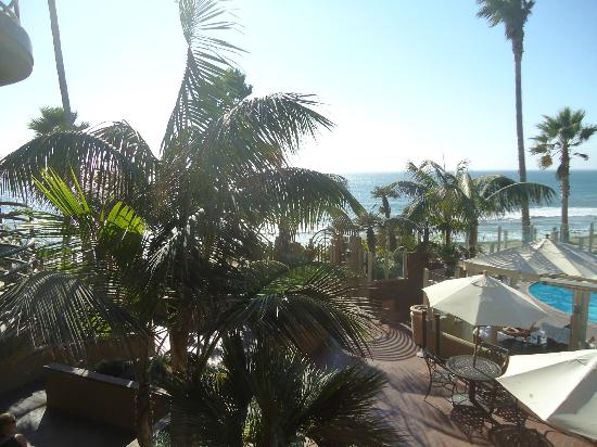 Pacific Terrace Hotel: i think this is from our balcony also