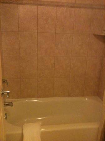 Rosen Shingle Creek: nice tub