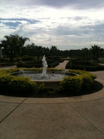 Rosen Shingle Creek: lush grounds