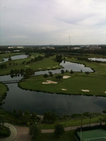 Rosen Shingle Creek: our room view