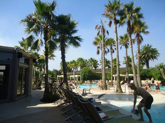 Hyatt Regency Mission Bay : pool