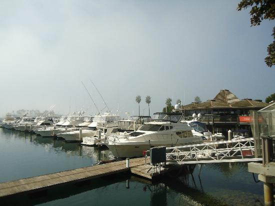 Hyatt Regency Mission Bay: marina
