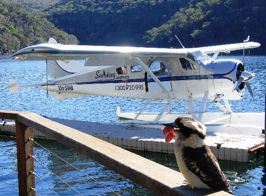 Sydney By Seaplane - Private Tours