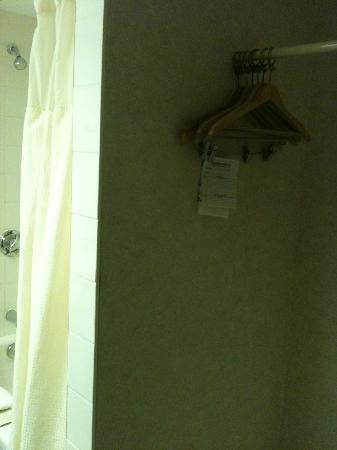 Clarion Hotel & Suites : Bathroom/Closet