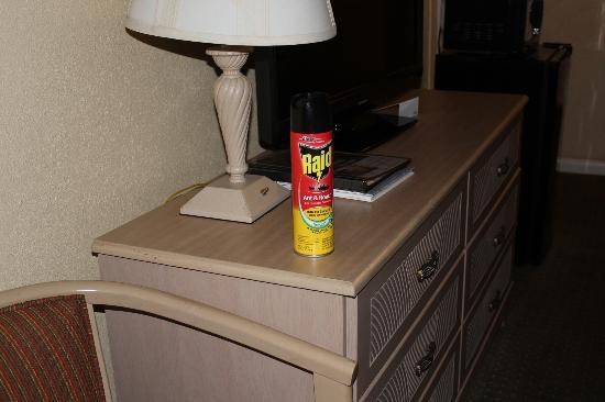 Days Inn Ocean City Oceanfront: Can of raid they brought me for the ants