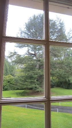Bunchrew House Hotel: View of The Tree